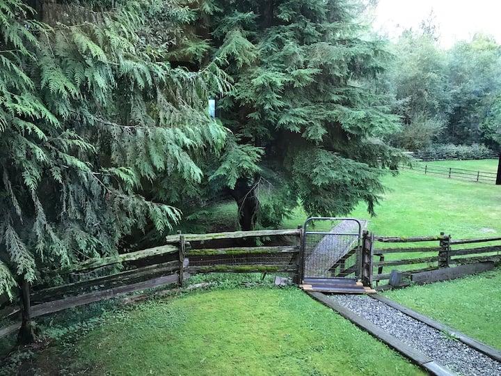 Coghlan Creek Farm