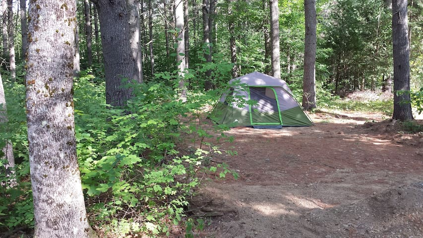 Tent w/queen air mattress at Stonecrop Meadow - Hampden - Tenda