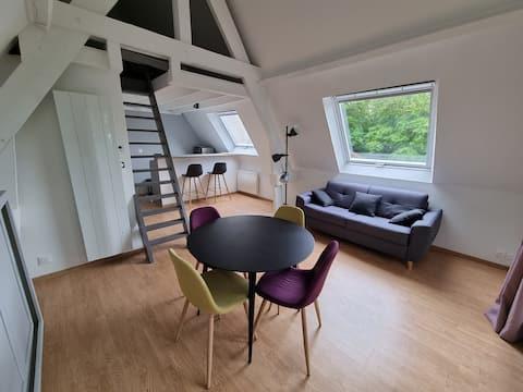 Charmant studio indépendant (SaintGatien des bois)