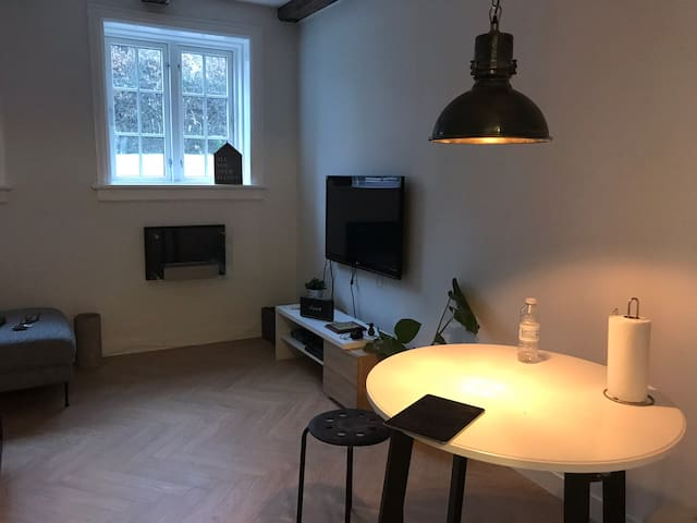 Big, cozy and brand new apartment