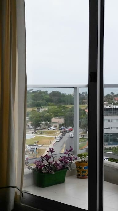 La vista desde el living_comedor, en el horizonte el mar, y mucho verde.