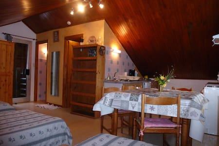 studio dans chalet indépendant au calme - Valloire - Apartment