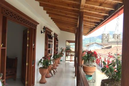 Room in Teresita's house - Beautiful Balcony - Jardín - 古巴家庭旅馆(Casa particular)