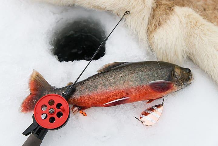 Fiskestuga max 5 personer. - Östra Ormsjö - Blockhütte
