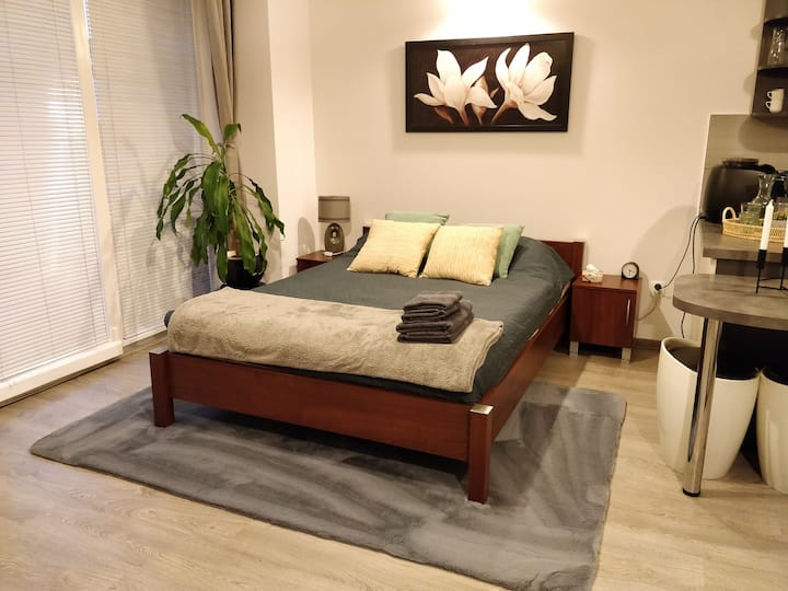 Studio flat in the city center, air conditioning