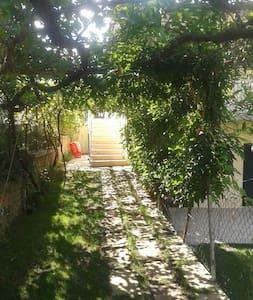 Appartamentino/lovely flat in Massa Marittima - Massa Marittima