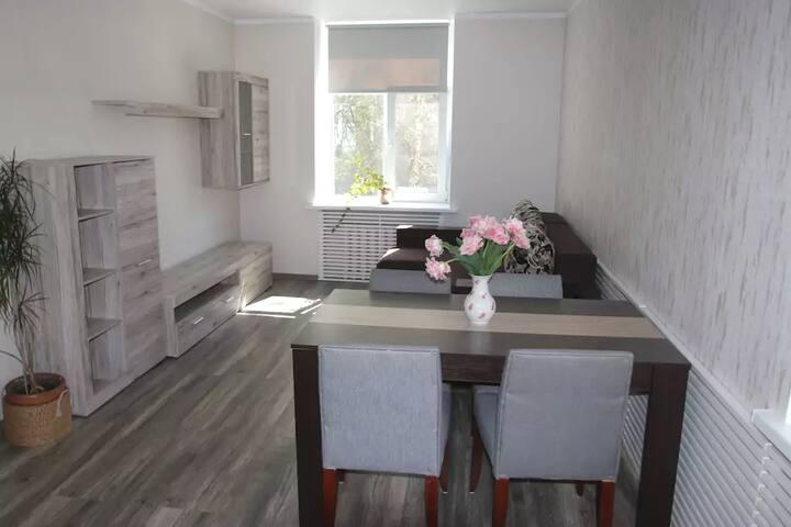 Cozy modern apartment near city center