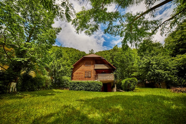 ☘️🌳Enjoy nature @RametVilla, the♥Transylvania🌳☘️