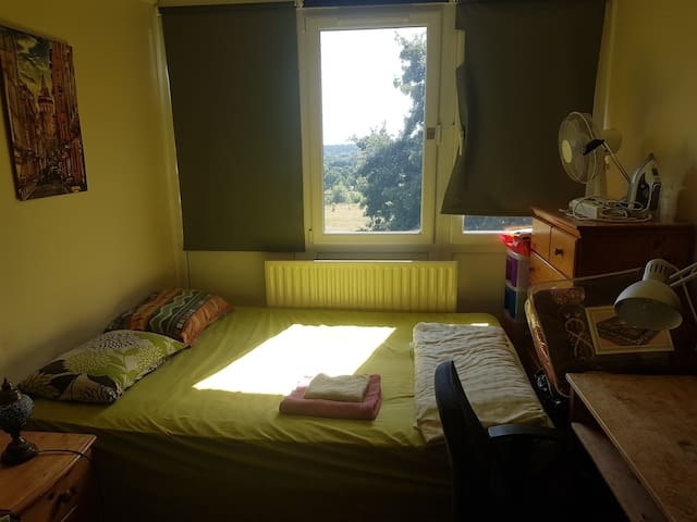 Cosy double room with nice Richmond Park view