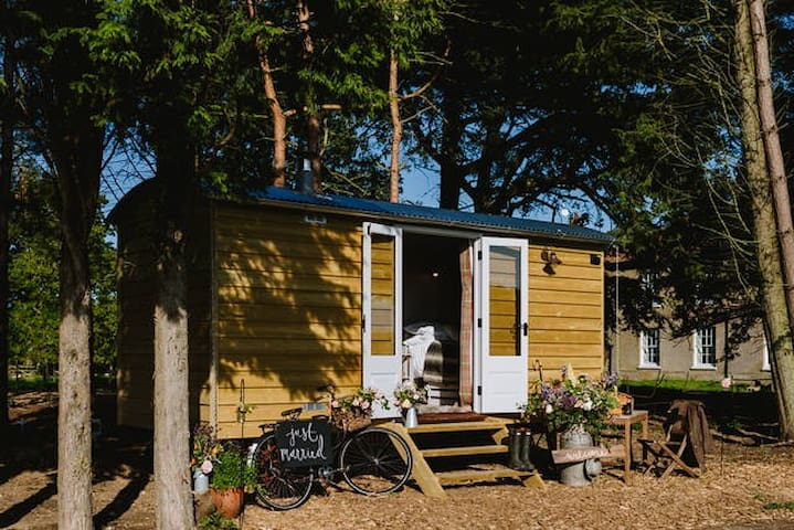 Godwick Shepherds Hut - The Ryeland Retreat - Godwick - Skur