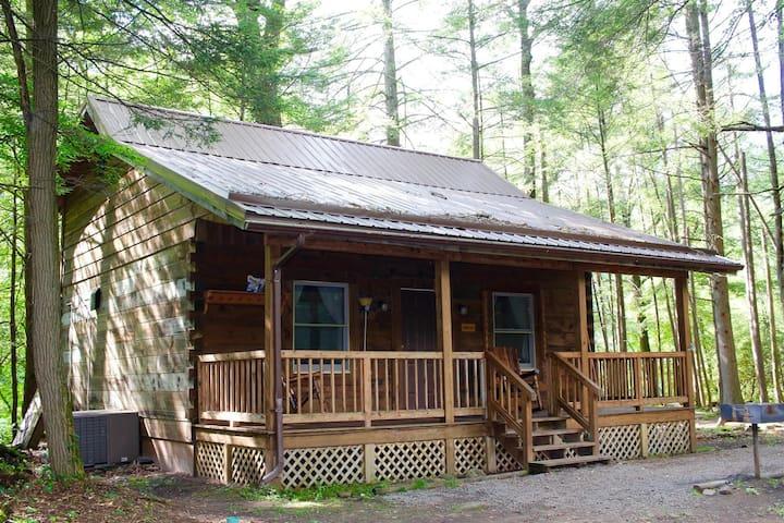 The Ashley Cabin @ Elk Springs Resort