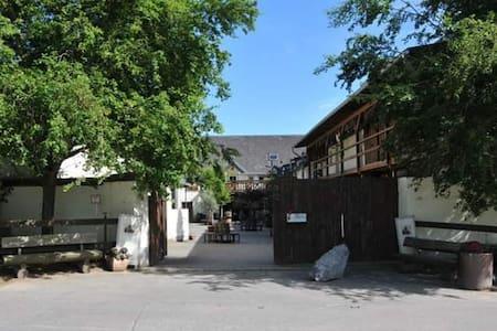 Ferienwohnung auf schönem Reiterhof Nähe Burg Eltz