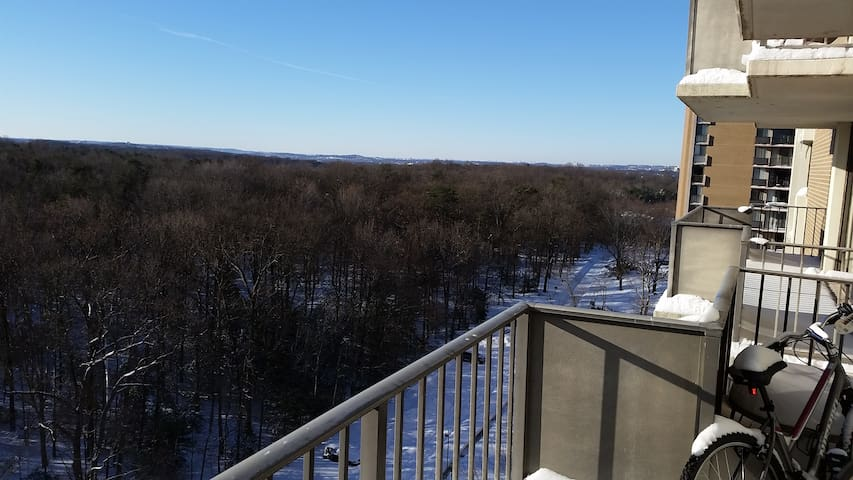 One room on the 16th floor - College Park - Apartment