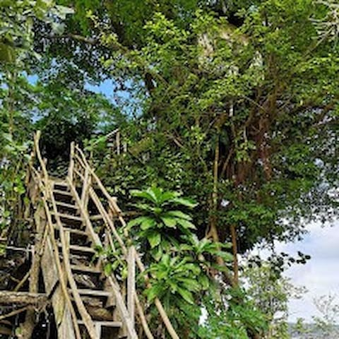 Volcano Eco Tree House and Bungalows