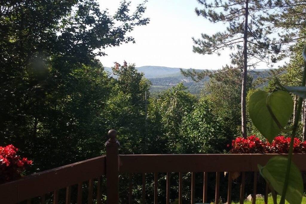 L'été sur la terrasse au 1er