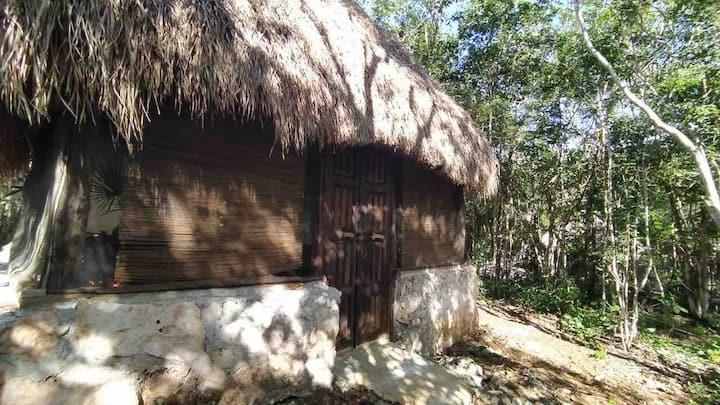 Totoaiko eco cabana