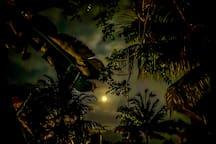 Full moon Balian