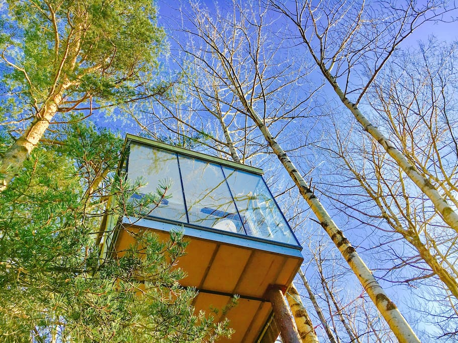 amazing panoramic tree house norway