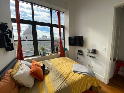 Large 2 bed Williamsburg Apartment with a view