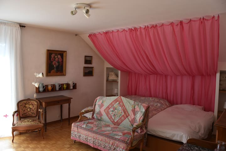 Large room near airport, PALEXPO, citycenter &more - Vernier - Dom