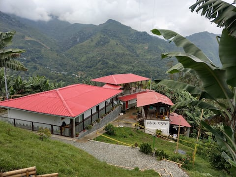 Hermosa y acogedora finca en Pijao - Quindío