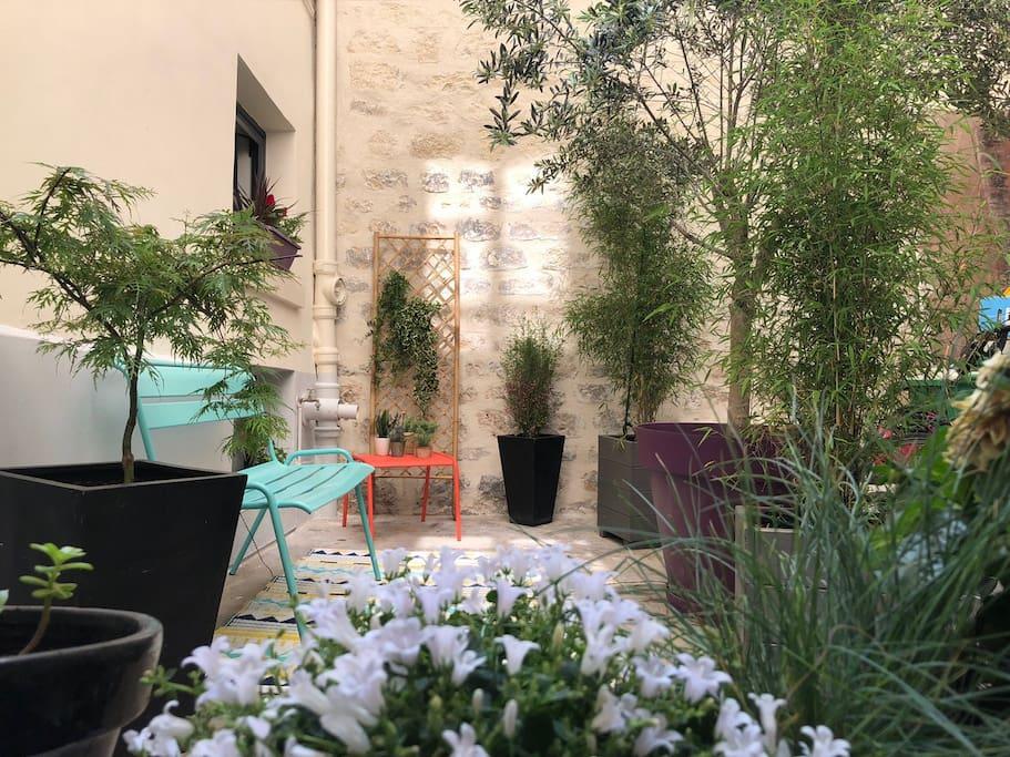 Cour / Courtyard