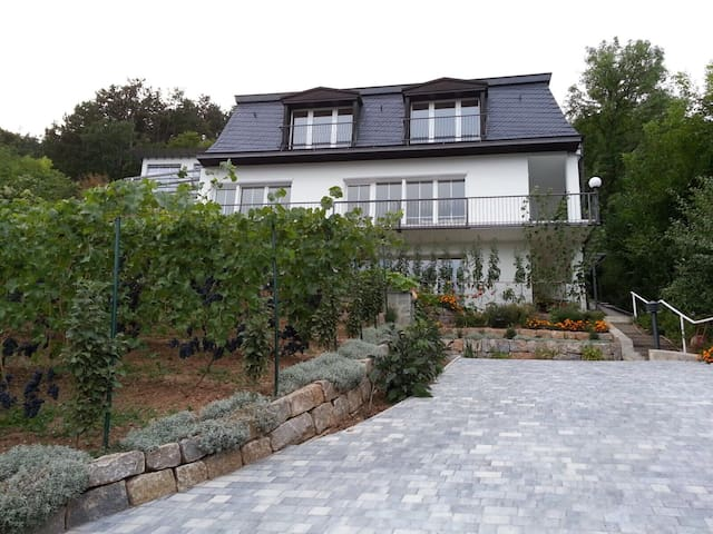Idyllisches wohnen am Weinberg - Bad Kissingen - Apartment