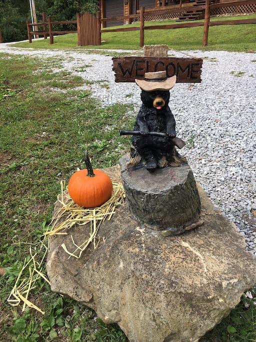 Black Bear Cabin Security