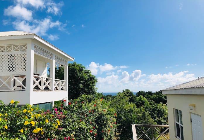Seaview Apartment ~SOUTH COAST  Caribbean Sea  2nd floor of double storey building ~ surrounded by cascading tropical flora and fruit trees, which attract the hummingbirds & butterflies and tiny tree frogs. Sandy beach directly in front 100yds.