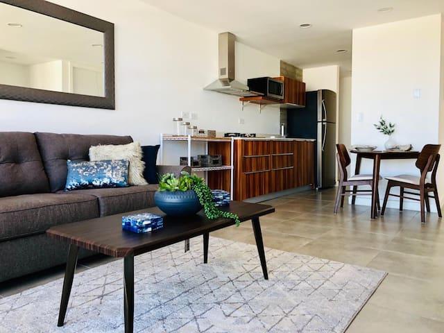 Fabulous Apartment in Downtown Tijuana- 5th Floor