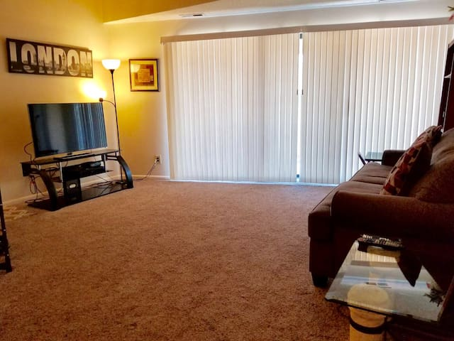 Luxury Apartment, minutes from Cedar Point!