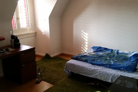 Room in Oerlikon - 苏黎世 - 公寓