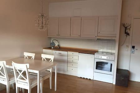 Sentral leilighet i vakre omgivelser på Geilo - Geilo