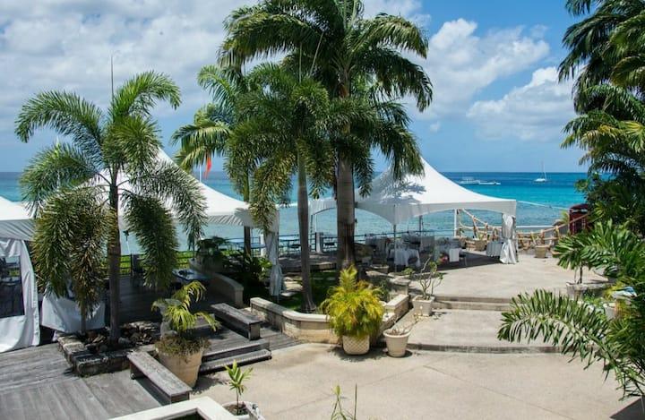 Sungazer-Holetown Apt & Beach Club on West Coast