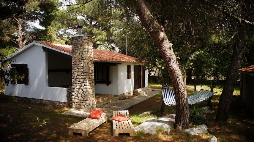 "House""Pine villa""Pakoštane"" - Pakoštane - Casa"