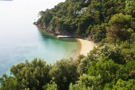 Paradise on a Budget, Private Beach (5) - 斯基亞索斯 - 公寓