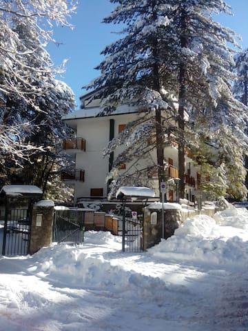 Vacanza in montagna -Camigliatello - Camigliatello Silano - Huoneisto