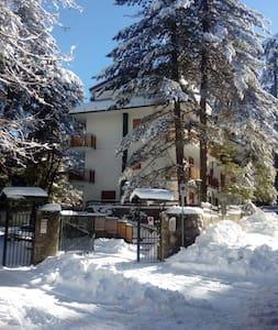 Vacanza in montagna -Camigliatello - Camigliatello Silano - อพาร์ทเมนท์