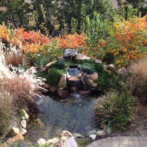 Fall pond.