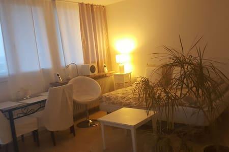 Gemütliches 1-Zimmer Apartment - München - Huoneisto