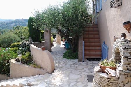 Villa provençale Haut Var - Tourves - Villa