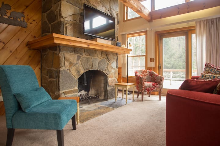 """""""There is a large flat screen TV in the living room, that we watched some of the Olympics on, from the very comfy plush couch (which is a pullout bed too)."""" Karen (August 2016) Note: Fireplace is for aesthetic purposes only - we cannot use it at this time."""