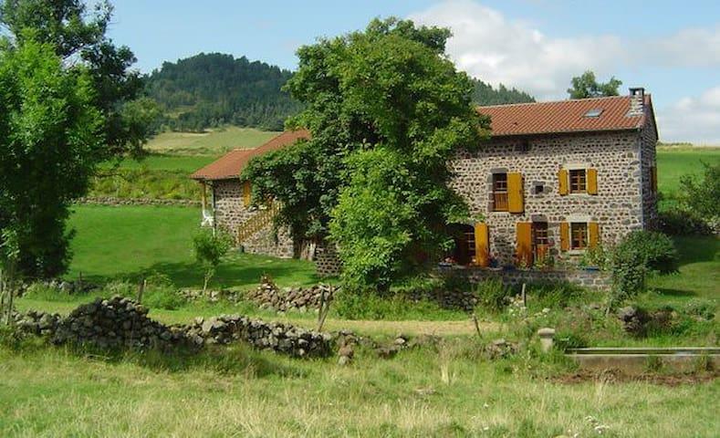 Ferme rénovée de caractère - Solignac-sur-Loire - Casa