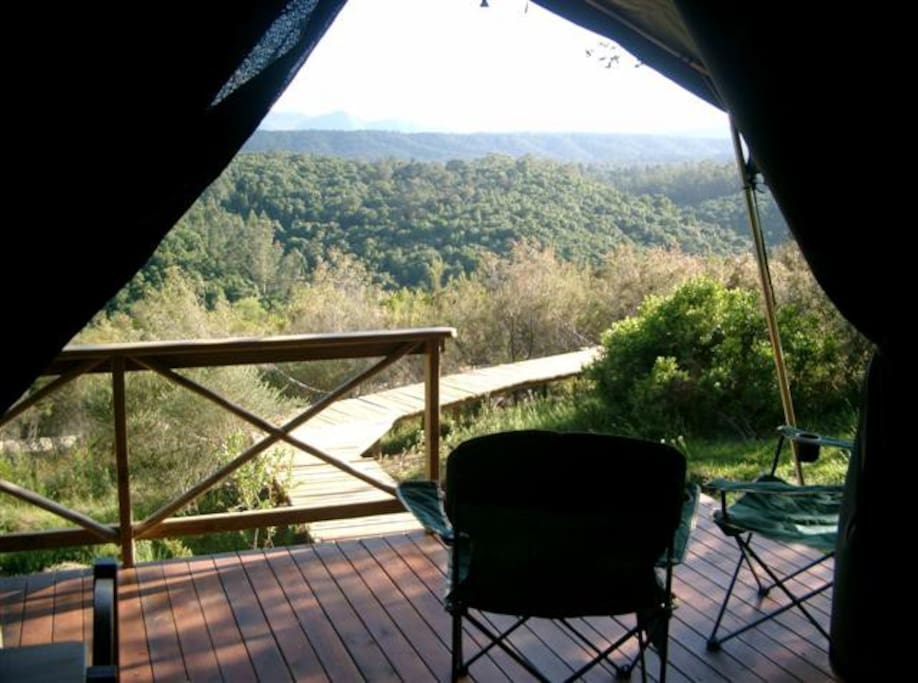 The View from your Tent