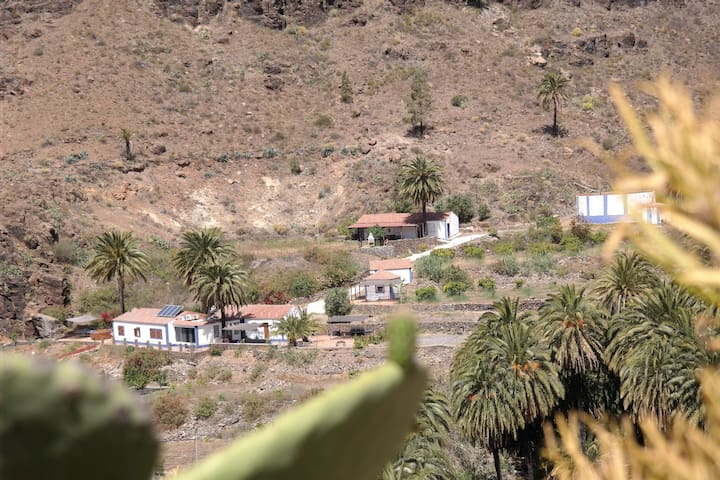 Eco villa EcoTara Canary Islands - Fataga - Villa
