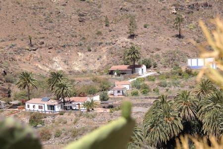 Eco villa EcoTara Canary Islands - Fataga - Villa