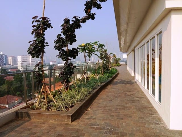 Walking and Jogging track