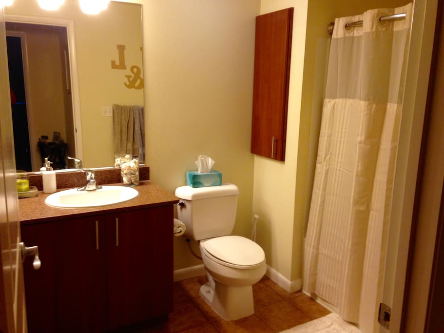 Large bathroom including giant bath tub/shower combo, exhaust fan, great lighting and plenty of cabinet space.