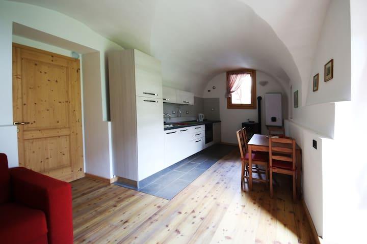 Bilocale nel cuore di Vigo Rendena - Vigo Rendena - Apartament