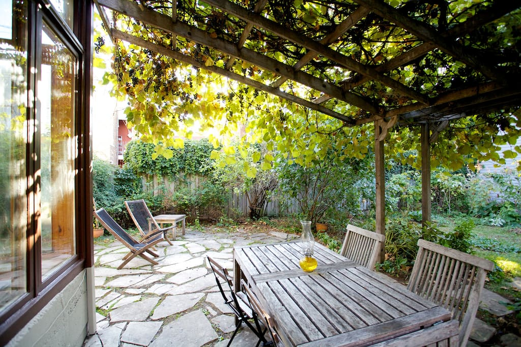 View of the patio backyard.  Help yourself to the grapes!